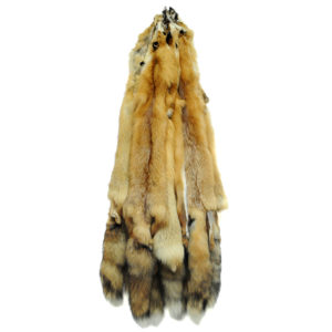 Fox & Coyote Fur