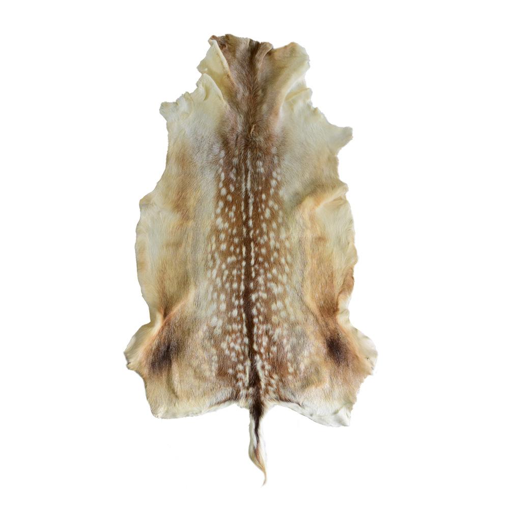 Single Skin Rug-Axis Deer Hide