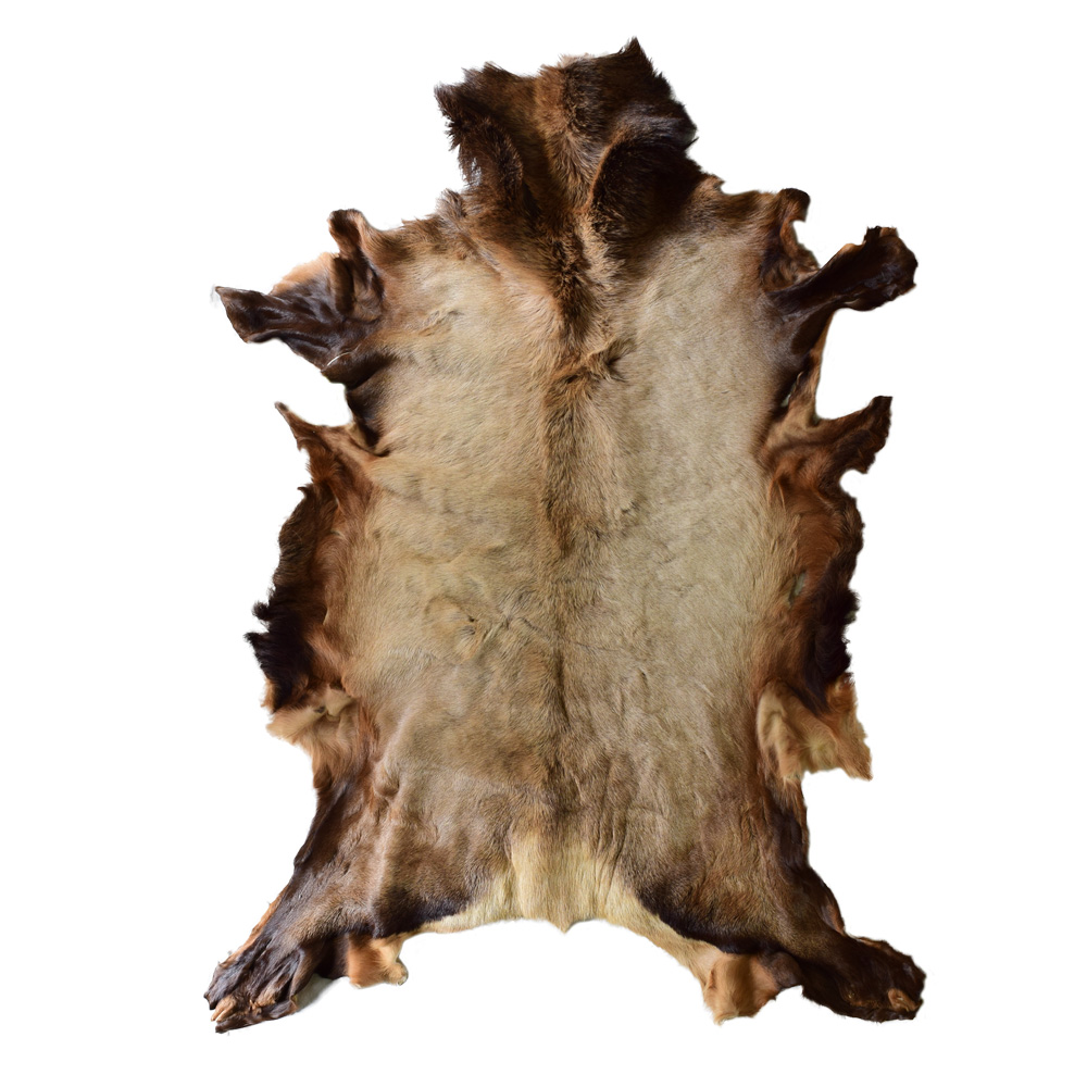 Single Skin Rug-Elk Deer Hide