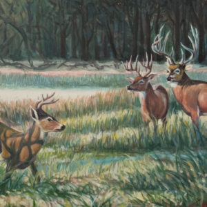 Wildlife Painting